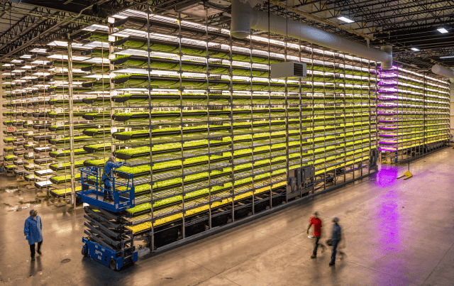 Vertical farming/Image credit to AeroFarms, all rights reserved